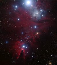 Mlhovina NGC 2264; Zdroj: ESO