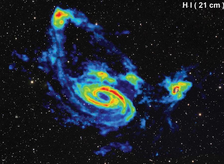 Skupina galaxií pozorovaná v záření neutrálního vodíku. Dominantní galaxií je ve středu obrázku galaxie M81. Galaxie vlevo nahoře je NGC 3077, galaxie vpravo M82. Kromě těchto tří objektů jsou na obrázku viditelné i další menší (trpasličí) galaxie. Zdánlivá vzdálenost mezi galaxiemi M81 a M82 je asi 130 000 světelných let, skutečná 300 000 světelných let (vzdálenost mezi Mléčnou dráhou a Velkým Magellanovým mrakem je 160 000 světelných let). Obrázek z: Yun, M.S., Ho, P.T.P., & Lo, K.Y. 1994, Nature, 372, 530.