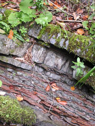 Flyšové sedimenty mazáckého souvrství
