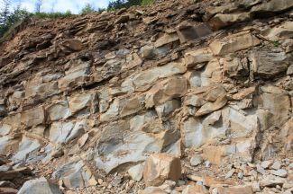 Arkózové pískovce istebňanského souvrství