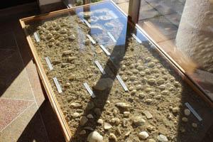 Velkou zajímavostí je paleontologická miniexpozice v níž najdete ukázky mnoha vyhynulých živočichů a rostlin.